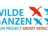 logo-wilde-ganzen-kleur