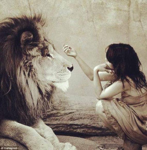 leeuws